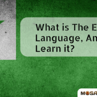 What is The Esperanto Language, And Why Learn it?