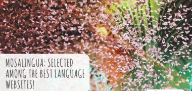 MosaLingua: Selected Among the Best Language Websites!
