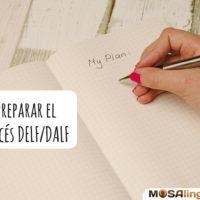 Consejos para preparar el examen de francés DELF/DALF