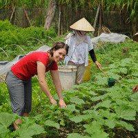 Come apprendere una lingua per andare in missione umanitaria / fare volontariato