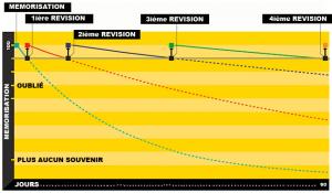 Forgetting Curve : la courbe de l'oublie et la répétition espacée (SRS)