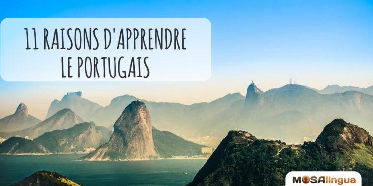 raisons d'apprendre le portugais