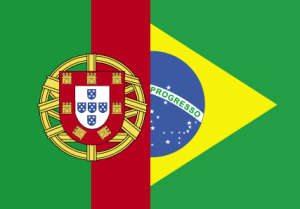 Version Portugaise du site de MosaLingua Image