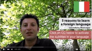 Video-Luca