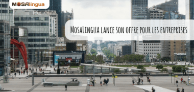 MosaLingua lance son offre pour les entreprises