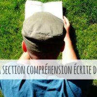 test-anglais--comment-russir--la-section-comprhension-orale-du-toefl--comment-avoir-un-bon-toefl-score--la-section-comprhension-crite--apps-pour-apprendre-rapidement-l039anglais-l039espagnol-l039italien-l039allemand-et-le-portugais-sur-iphone-ipad-android--mosalingua