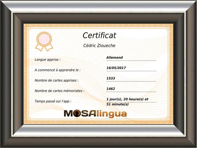Certificat d'aptitude en langue MosaLingua
